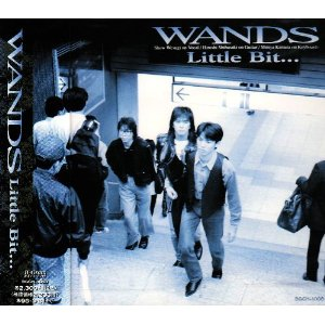 WANDS : Little Bit・・・ (1993)